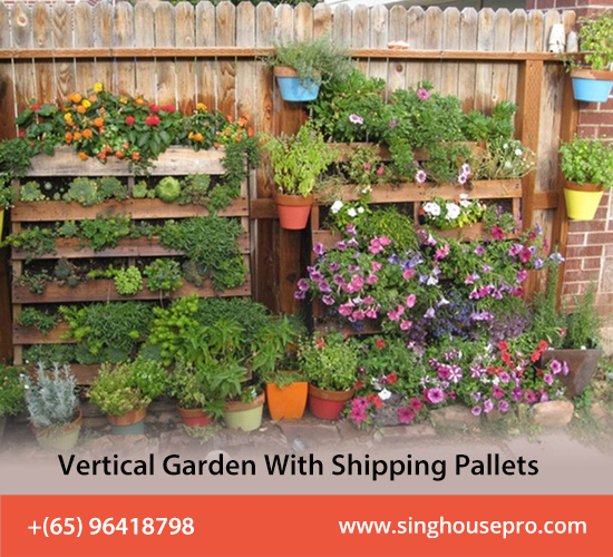 How To Build A Vertical Garden With Shipping Pallets?